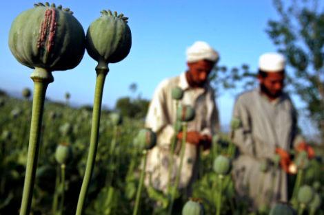 20080421tadjikistan.jpg